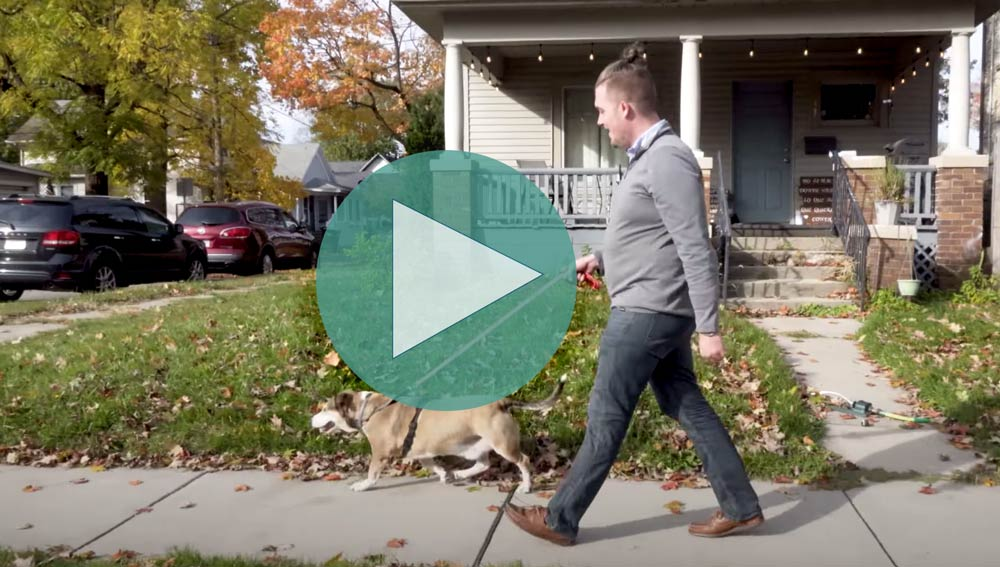 East Lincoln Crossroads Neighborhood Dog Park • The Good of Goshen