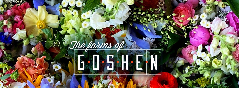 The Good of Goshen • The Farms of Goshen