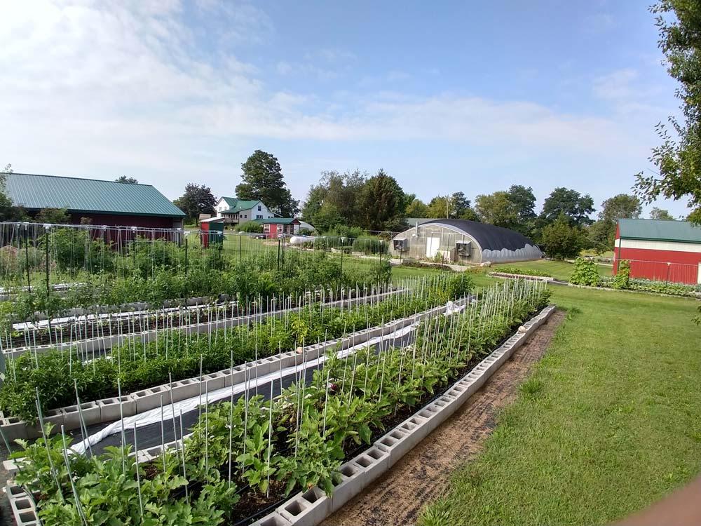 Nelson's Herbs • The Good of Goshen