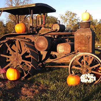 Knollbrook Farm • The Good of Goshen